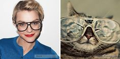 Funny Pictures Of Cats In The Awkward Poses Of Fashion Models - Hahahaha