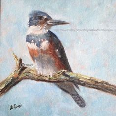 Artists Of Texas Contemporary Paintings and Art: Kingfisher II by Wanda Caro Great Paintings, Beautiful Paintings, Oil Paintings, Oil Painting For Sale, Oil Painting On Canvas, Blue Bird Art, Bird Wall Art, Square Art, California Art