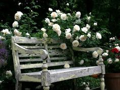 Things We Love: Garden Benches