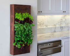 For a culinary advantage, create an indoor herb planter. Something small and concise will be easy to maintain, smell great, and introduce a natural element to your interior.