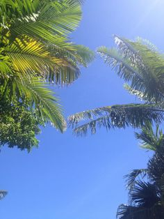 Sunbathing at Nomads