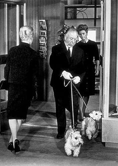 Alfred Hitchcock's cameo appearance in The Birds (1963) as Tippi Hedren enters the pet shop, Hitchock leaves with his own dogs.