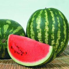 How To Grow Watermelon, Watermelon Art, Como Plantar Pitaya, Watermelon Varieties, Marzipan Fruit, Fruit Seeds, Food Garnishes, Tree Seeds, Aquatic Plants