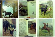A collage of some beautiful illustrations from 'Black Beauty' - by Anna Sewell