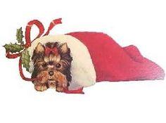 Resultados de la búsqueda de imágenes: christmas yorkie images - Yahoo Search