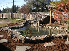 How to Make Fake Rocks for Your Pond in 8 Steps