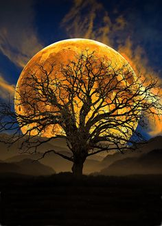 A fun image sharing community. Explore amazing art and photography and share your own visual inspiration! Moon Images, Moon Pictures, Nature Pictures, Beautiful Pictures, Beautiful Nature Wallpaper, Beautiful Moon, Fantasy Landscape, Fantasy Art, Shoot The Moon