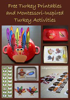 Montessori-Inspired Turkey Activities Using Free Printables