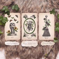 Inquizitor Fig, Tarot, Tarot Cards, Tarot Decks, Figs
