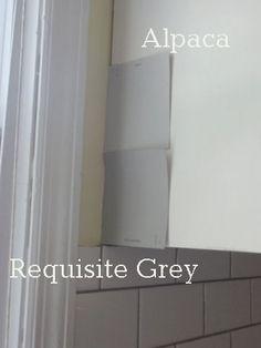 Sherwin Williams Alpaca vs. Requisite Gray
