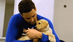 Klay Thompson playing with a service puppy in training named Klay Golden State Basketball, Basketball Is Life, Basketball Tips, Basketball Players, Thompson Warriors, Splash Brothers, Christian Yelich, Nba Champions, Nba Players