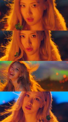 Love Rose, Pink Love, Kpop Girl Groups, Kpop Girls, Divas, Rose And Rosie, Blackpink Poster, Rose Park, Kim Jisoo