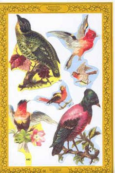 Songbirds Thrush Bluebird Decoupage Scrap German die cut and embossed scrap which can be used for all art and decoupage projects from Earnst Freihoff collection of antique style scraps or scrap for scrap book ing hobby craft and greeting cards or gifts.
