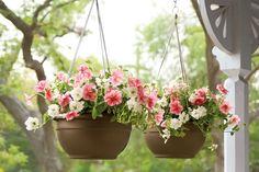 Self Watering Hanging Baskets