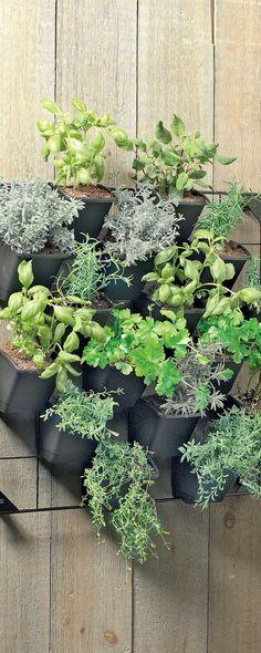 On craque pour les tableaux végétaux !