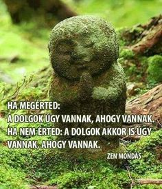A megoldás benned van! Qoutes, Life Quotes, Meditation Space, Old Postcards, English Quotes, Messages, Thoughts, Humor, Motivation