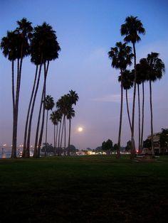 Full Moon San Diego at The Dana on Mission Bay by Majed Sahli, via Flickr