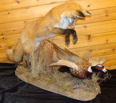 Fox and bird mount