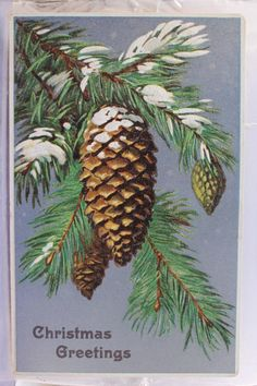 Vintage Christmas card with pinecones