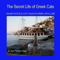 The Secret Life of Greek Cats: Feline Photos & Cats' Tales of Greek Life & Lore