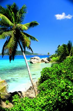 Seychelles, un luogo