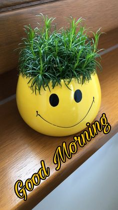 Good Morning greetings  Rajesh Dutt Tepan - Google+ Funny Good Morning Greetings, Funny Good Morning Quotes, Good Morning Funny, Morning Greetings Quotes, Good Morning Coffee, Happy Morning, Good Morning Picture, Good Morning Flowers, Good Morning Friends