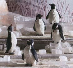Set of 5 sisal penguin ornaments @nova68 for $49.99