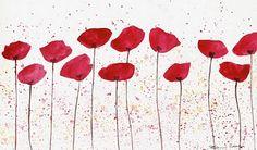 Non solo Aris: poppies