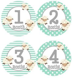 Baby Monthly Milestone Growth Stickers Mint Lamb Nursery Theme MS553 Baby Boy Girl Shower Gift Baby Photo Prop
