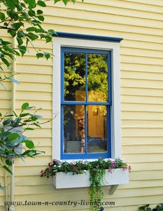 The blue is Downpour by Shermin Williams. The siding is a buttery yellow called Butter Up. The white is Snowbound and it's a true white that makes everything look crisp.