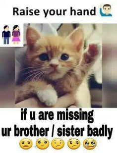Trendy funny quotes and sayings family animal pictures Brother Sister Love Quotes, Brother And Sister Relationship, Missing You Brother, Brother Birthday Quotes, Sister Quotes Funny, Cousin, Funny Quotes, Funny Sister, Daughter Poems