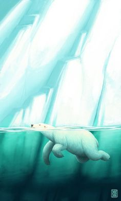 Denis Zilber | Polar Bear Illustration