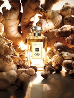 Jo Malone Nutmeg  Ginger Cologne | Our first fragrance. Sandalwood and cedarwood seasoned with nutmeg and vibrant ginger. Unexpected and addictive.