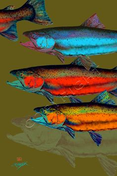 SALMON and TROUT Fish Print by Dean Crouser by DeanCrouserArt