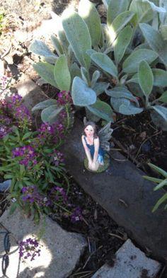 Faries garden:)