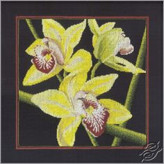 Orchids Cymbidium - Cross Stitch Kits by RTO - M264
