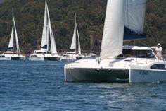 Seawind regatta