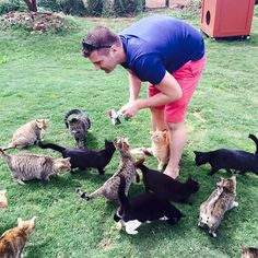 People from all over the world travel to this incredible cat sanctuary in Hawaii, and after taking a peek inside you're going to want to come too! The Lanai Cat Sanctuary is a picture purfect paradise for cat lovers.           After all, it spans 25,000 square feet and is home
