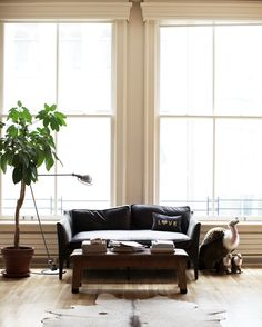 27 best trying to decide whether i like cow hide images living rh pinterest com