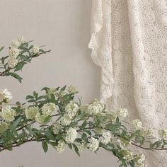 Find images and videos about white, aesthetic and flowers on We Heart It - the app to get lost in what you love. Mint Green Aesthetic, Cream Aesthetic, Plant Aesthetic, Aesthetic Colors, Flower Aesthetic, Aesthetic Vintage, Aesthetic Photo, Aesthetic Pictures, Photocollage