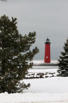 Lake Michigan Light