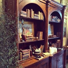 Biedermeier collection, organized bookcases