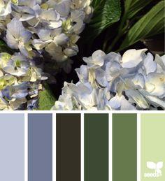 Hydrangea Hues - http://design-seeds.com/index.php/home/entry/hydrangea-hues11