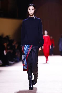 Hermes Ready To Wear Fall Winter 2015 Paris