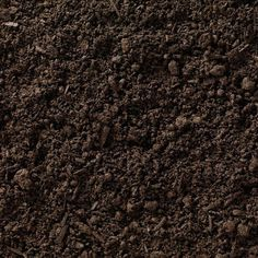 What sort of juju does your dirt have? By Nicholas Stix Chimayo Holy Dirt At Countenance , natch ! Streaming Movies, Hd Movies, Movies To Watch, Movies Online, Feng Shui, Cash Crop, Soil Texture, Garden Types, Full Movies Download