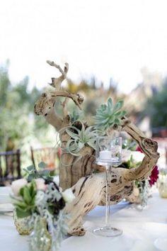Driftwood, succulent, and air plant centerpiece via Melissa McClure Photography / http://www.himisspuff.com/air-plants-wedding-ideas/3/