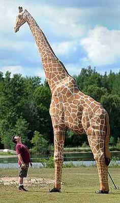 Rhinehart 3D archery giraffe target! You need a ladder to retrieve your arrows! Lol awesome!