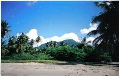 Mt. Nevis Peak from Pinney's Beach in Nevis by Tina Hull