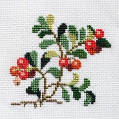Brilliant Cross Stitch Embroidery Tips Ideas. Mesmerizing Cross Stitch Embroidery Tips Ideas. Cross Stitch Fruit, Small Cross Stitch, Cross Stitch Borders, Cross Stitch Rose, Cross Stitch Flowers, Cross Stitch Designs, Cross Stitching, Cross Stitch Embroidery, Cross Stitch Patterns