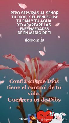 Good Morning Prayer, Good Morning Texts, Good Morning Messages, Morning Prayers, Good Morning Quotes, Biblical Quotes, Spiritual Quotes, Faith Quotes, Bible Quotes